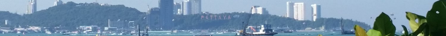 Pattaya City On The Hill